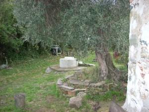 архондарика в килията Панагуда