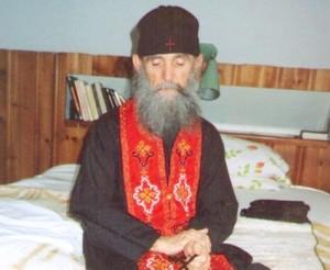 Болките и скърбите в нашия живот - старец Ефрем Филотейски