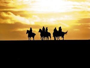 пътуване до търново с кон (1)