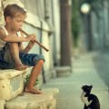 music cats children 1440x900 wallpaper_www.wallmay.com_92