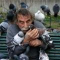 бедолага го топлят гълъби