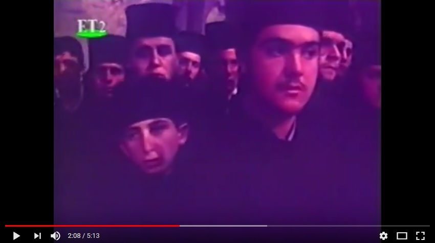 protata_1979